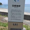 Photos: 羽根海岸名の由来