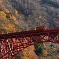 写真: 黒部峡谷鉄道