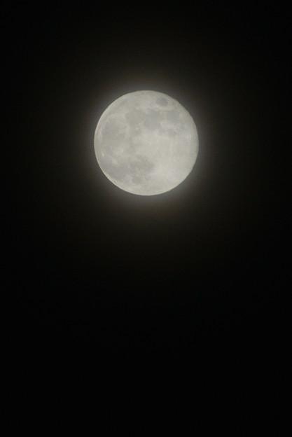 令和最初の満月