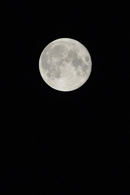 梅雨の晴れ間の満月(晩夏の月)
