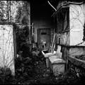 Photos: 廃屋