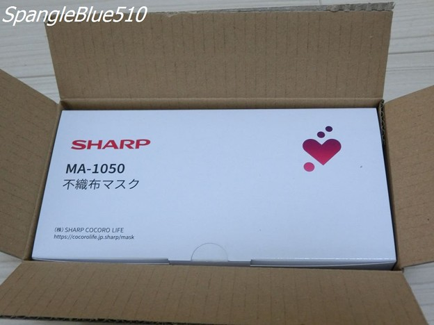 CIMG3994 1024×768 SpangleBlue510