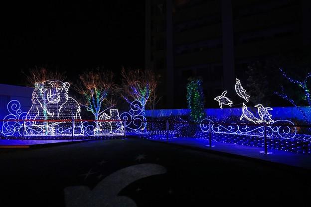 大阪光之饗宴-難波park-13