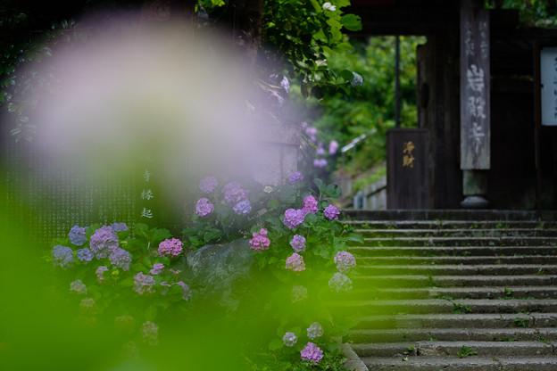 岩殿寺(逗子市)