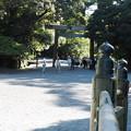 内宮への道