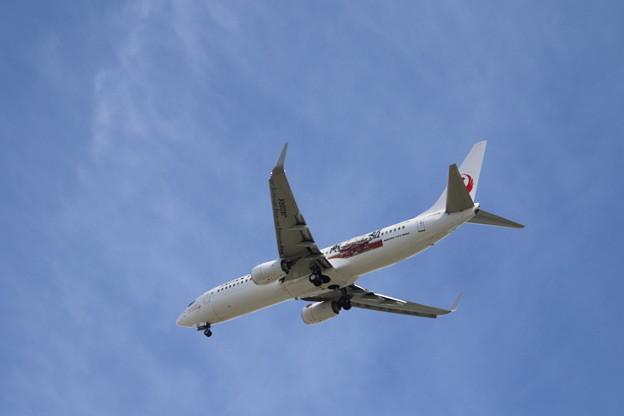 Photos: JAL