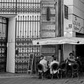 Photos: お昼の社交場