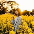 Photos: 金色の菜の花畑
