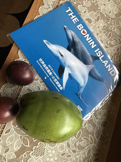 小笠原丸のル~ムキーと椰子の魅+パッションフルーツ