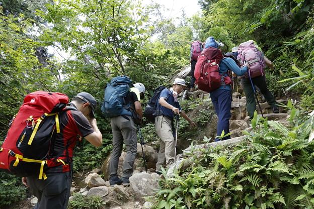 日本の山 山の天気講座 薬師岳 太郎坂の急登です
