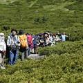 日本の山 山の天気入門 加賀白山 展望コースにて