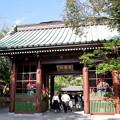 鎌倉サイクリング15