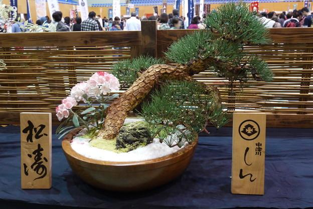 中津川菓子まつり11