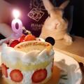 203550-グングンちゃん「HAPPYBIRTHDAY」