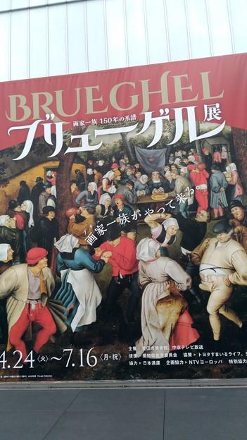 brueghel (12)