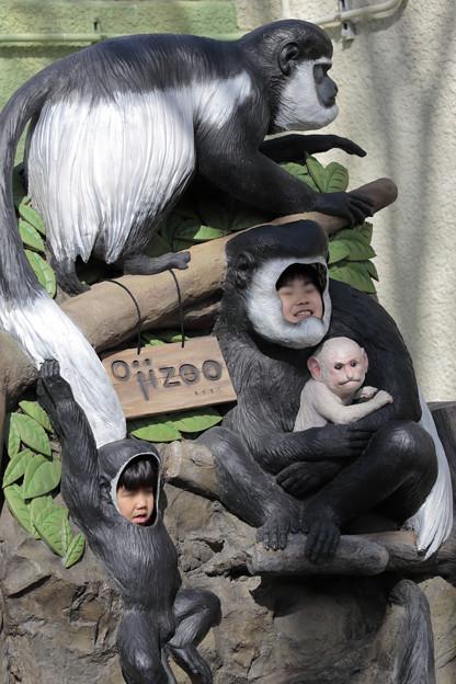 王子動物園27