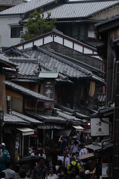 京都5月12