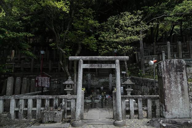 京都5月11