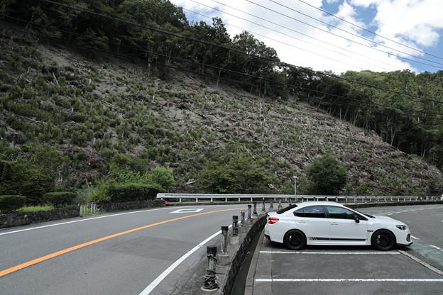五月山~箕面山08