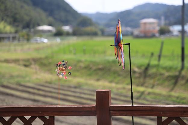 猪名川町サラトテン05