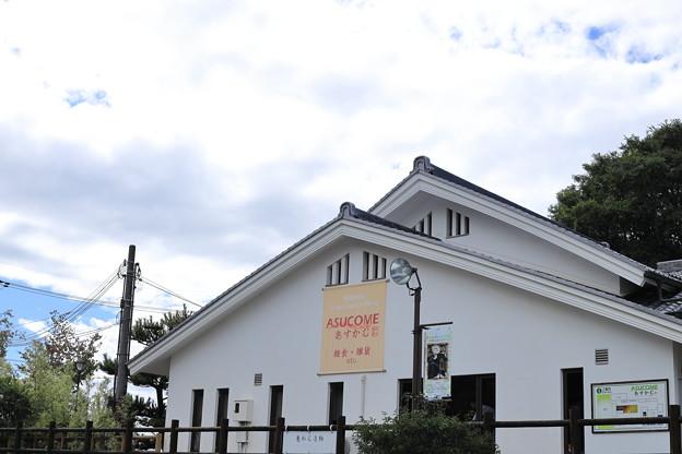 奈良キトラ古墳05