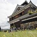 Photos: 福知山城17