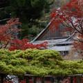 Photos: 京都・西山 善峯寺22