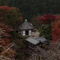京都・西山 善峯寺13