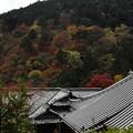 京都・西山 善峯寺12