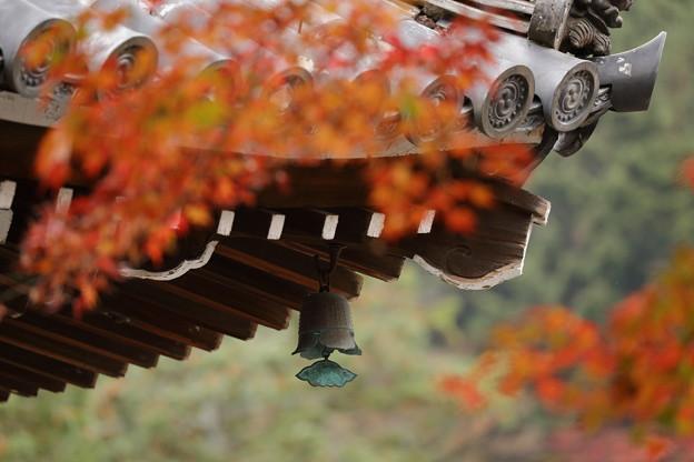 京都・西山 善峯寺07
