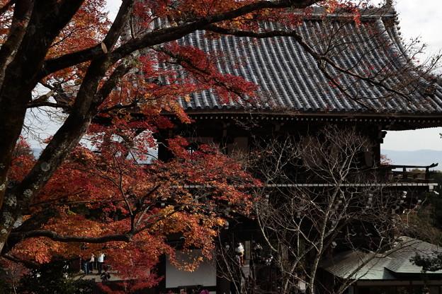 京都・西山 善峯寺23