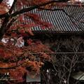 Photos: 京都・西山 善峯寺23