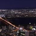 Photos: 梅田スカイビル空中庭園22