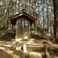 写真: 八雲神社