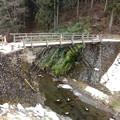 写真: 気になる橋