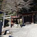 Photos: 素盞鳴神社