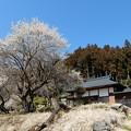 写真: 観音寺