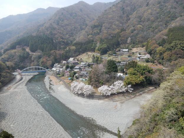 上野田大橋から