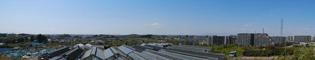 池辺富士から