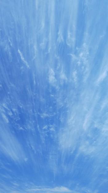 写真: 集中線