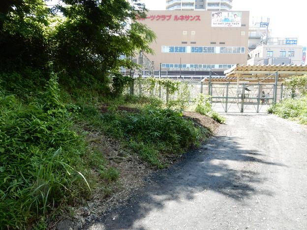 旧鎌倉街道