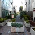 写真: 桃園川緑道