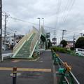 桜並木歩道橋