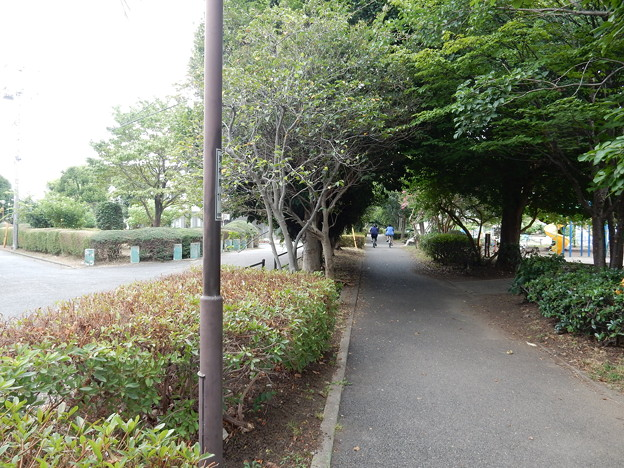 横浜水道交差
