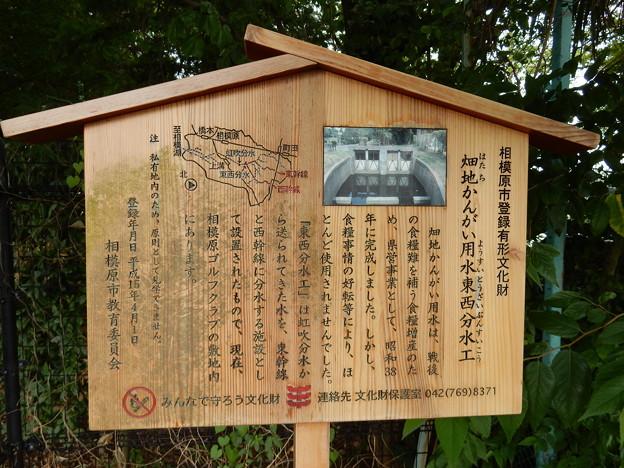 Photos: 畑地かんがい用水東西分水工