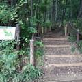 写真: 久米八幡越市民緑地
