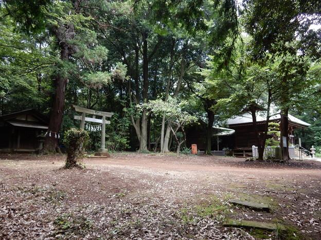 鳩峯八幡神社と八坂神社