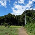 写真: 坂を上がって