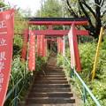 写真: 根岸稲荷神社