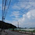 写真: 生田浄水場